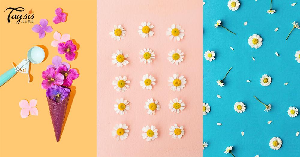 夏天就是花開遍地!來把手機也換成一張張夏日色彩的花花桌布吧〜